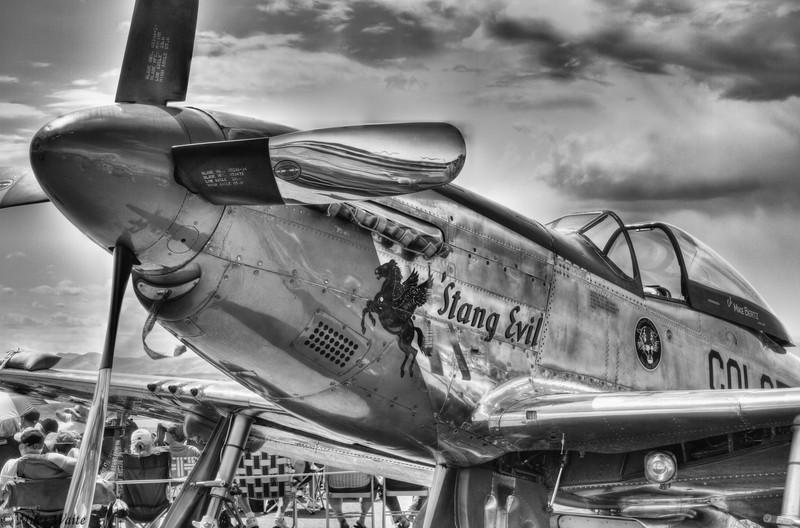 Michael Bertz North American P-51D Mustang. Stang Evil