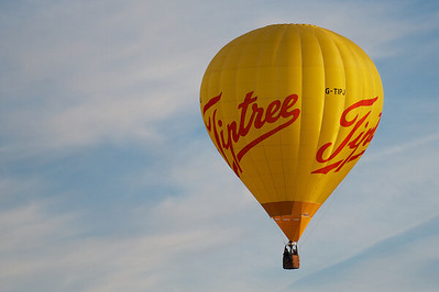 Tiptree in flight