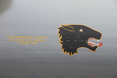 Avro Vulcan B2, XH558 / G-VLCN - close up of the No.1 group insignia, a panthers head, from its days as the RAF display Vulcan - 06/09/15.