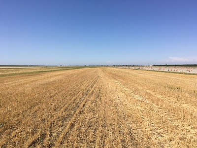 In a pinch, there are also some reasonable looking fields alongside runways at Crows Landing.  But seems unlikely you would need to land there given the enormity of paved surfaces.