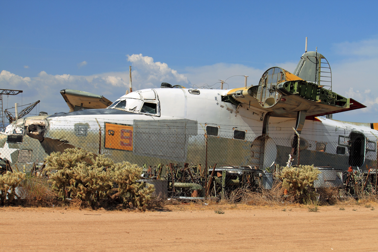 Albatross in Tucson Salvage Yard