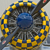 T-6 Texan - powered by the Pratt & Whitney R-1340-49 Wasp radial engine