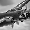 "B-25 Mitchell ""Betty's Dream"""