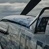 Crusader - P-51 Mustang