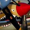 Shark Toothed Warhawks
