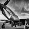 Fragile but Agile P-51 Mustang