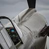 Warhawk Gunsight
