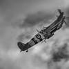 Spitfire #5