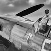 Spitfire #2