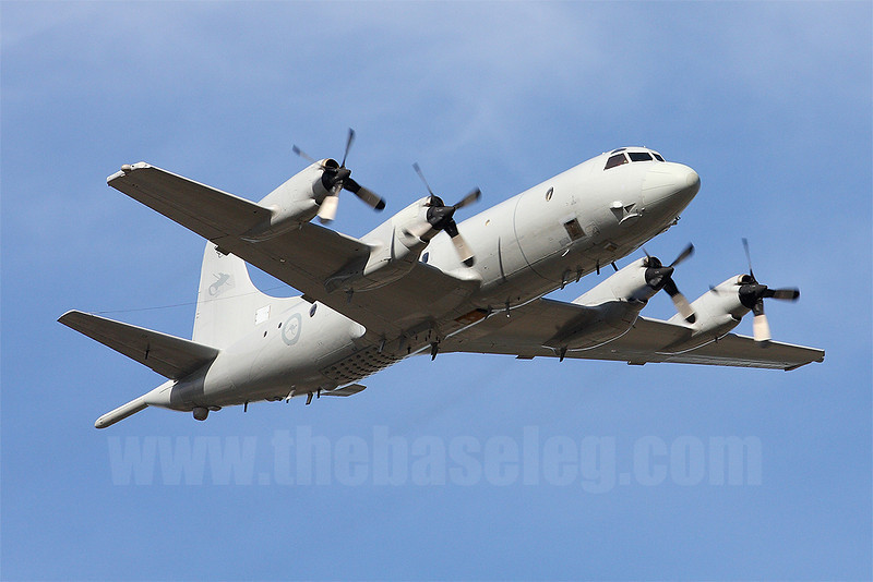 The RAAF's Orions have been heavily involved in operations over the Middle East