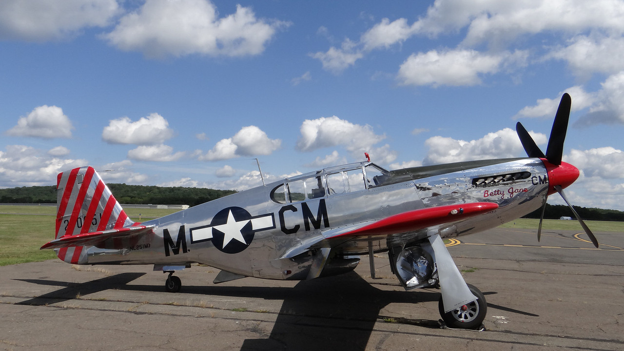 P-51 Mustang, WWII aircraft