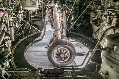 Wheel Well B737