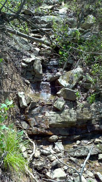 At the west end of my search area, I came across a small pool in a rocky ravine.