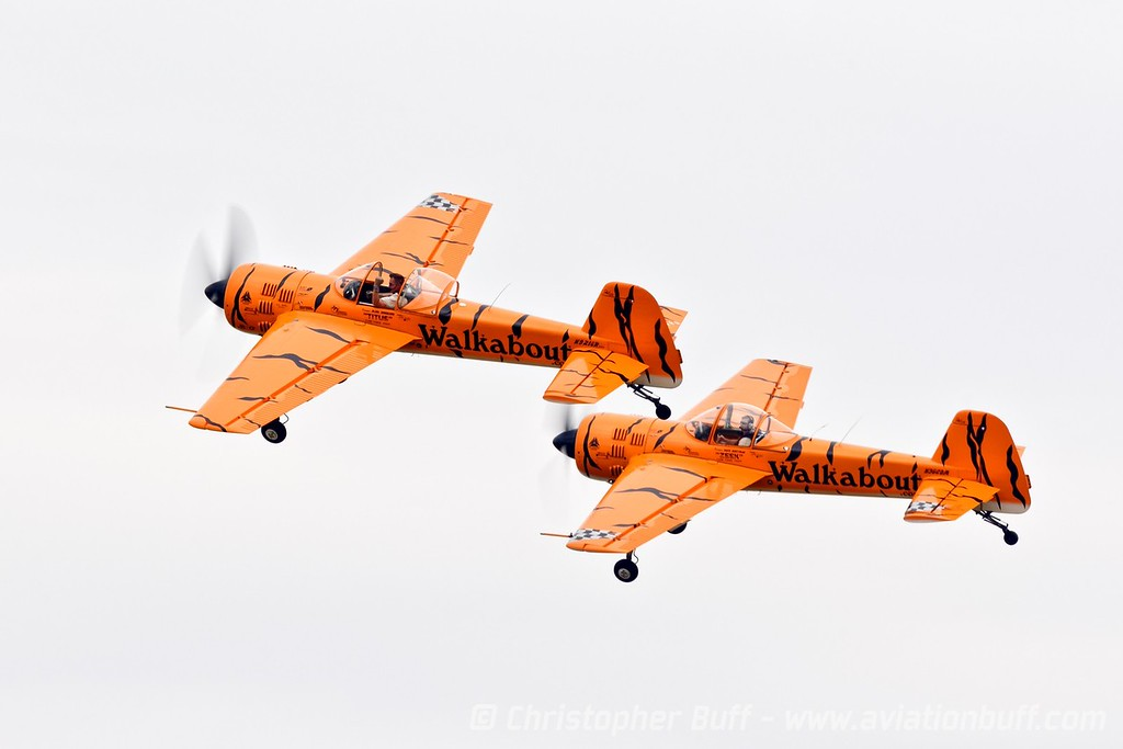 Walkabout Tigers  - By Christopher Buff, www.Aviationbuff.com