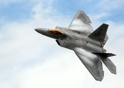 Raptor  - Christopher Buff, www.Aviationbuff.com