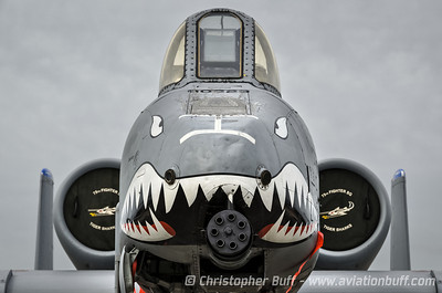 Don't mess with the Hawg - By Christopher Buff, www.Aviationbuff.com
