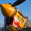 TIger's Nose - 2017 Christopher Buff, www.Aviationbuff.com