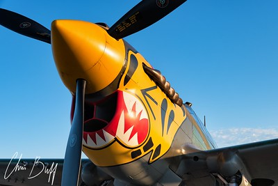 Ready to Prowl - 2018 Christopher Buff, www.Aviationbuff.com