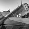 Warhawks in the morning - 2016 Christopher Buff, www.Aviationbuff.com