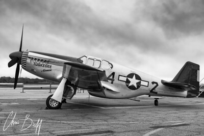 Tuskegee Airmen Mustang - 2017 Christopher Buff, www.Aviationbuff.com