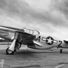 Tuskegee Airmen Mustang - 2017 Christopher Buff, www.Aviationbuff.com