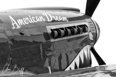 American Dream in Black and White