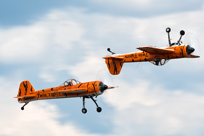 Twin Tigers over Robins AFB