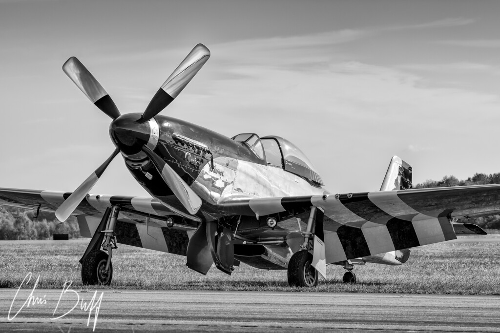 Quick Silver at Rest - Christopher Buff, www.Aviationbuff.com
