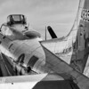 Sentimental Journey - Christopher Buff, www.Aviationbuff.com