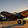 P-40 at Dawn - 2016 Christopher Buff, www.Aviationbuff.com