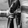 MITZI's Closeup - Christopher Buff, www.Aviationbuff.com