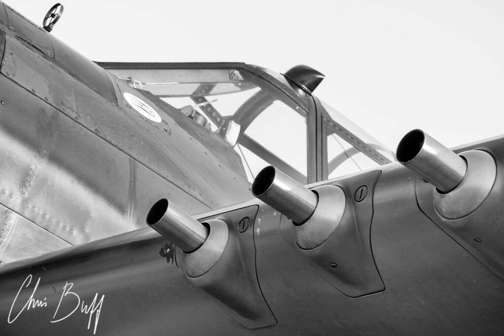 Tiger's Teeth in Black and White - 2016 Christopher Buff, www.Aviationbuff.com