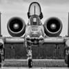 Angry, Wet, Hog - Christopher Buff, www.Aviationbuff.com