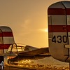 Golden Tails - Christopher Buff, www.Aviationbuff.com