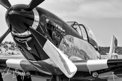 Quick Silver Closeup in Black and White - 2015 Christopher Buff, www.aviationbuff.com