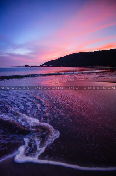 avila port dog beach-9096