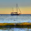 avila sailboat-3874