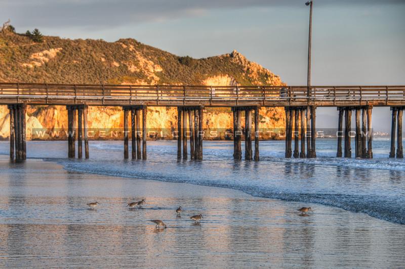 avila beach 1527-