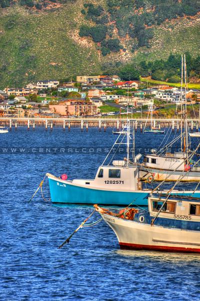 avila beach boats_2631