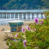 avila beach-5084