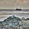 avila beach port san luis 5660