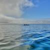 Avila ocean kayak fog 5072
