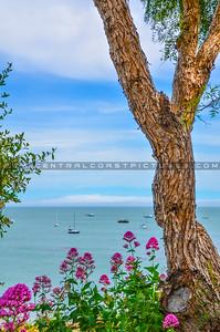 avila beach-5076