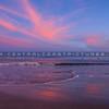 avila port dog beach-9052