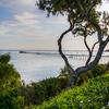 avila beach 1475-