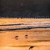 avila beach 1545-
