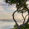 avila beach 1477-