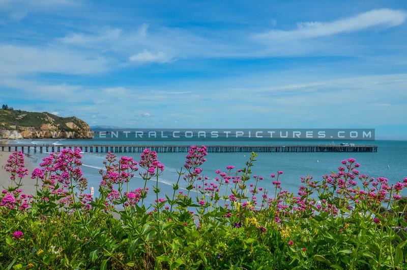 avila beach pier-5049