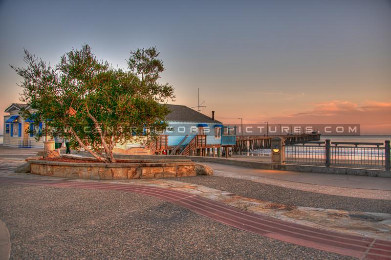 avila beach 1411-
