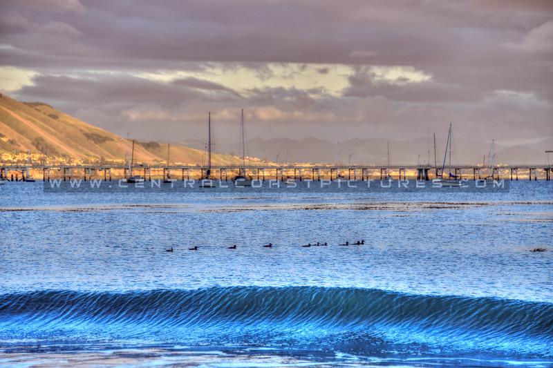 avila beach port san luis 5728